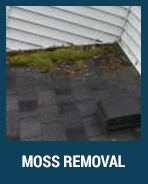 moss-removal