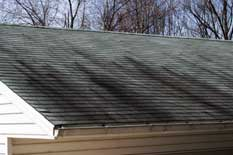 black-stains-on-my-roof