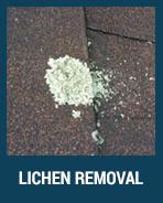 lichen-removal